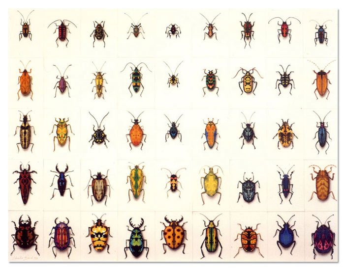 Charlie Baird Paintings Bugs 2000